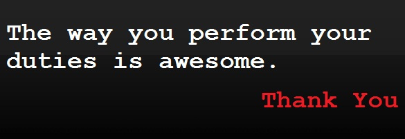 The way you perform your duties is awesome.