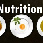 education required to be Nutritionist